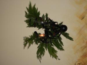 Kerstmarkt 2018-J.Stals  (3)