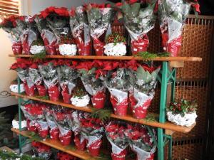Kerstmarkt 2018-J.Stals  (55)