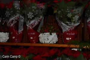 Kerstmarkt 2018  (10)